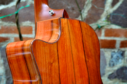 Custom-made Taylor guitar, made from IAG managed Hormigo tree
